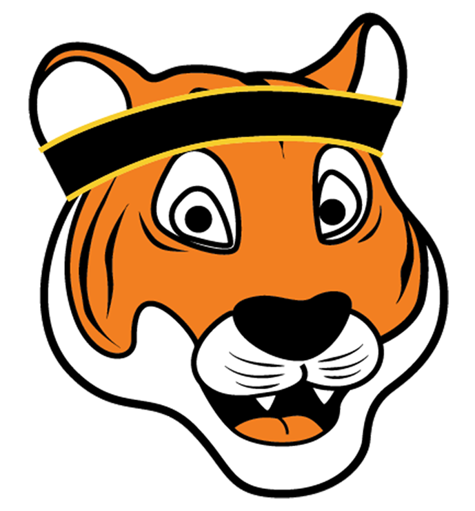 Cartoon Tiger Illustration Head